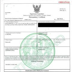 Phytosanitary documents for peyote cactus provided by Precious cactus